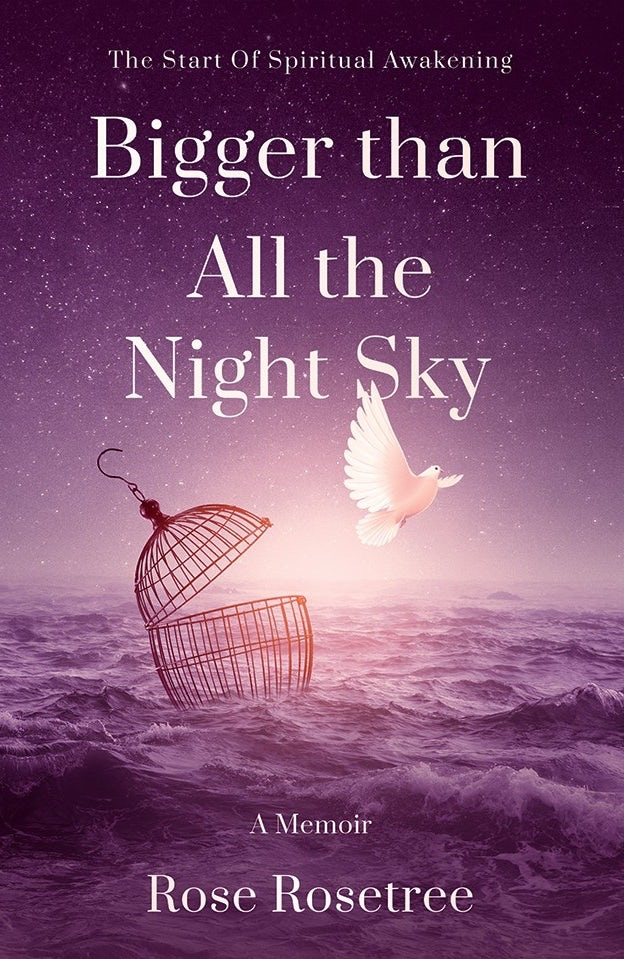 Buchcover: Bigger than All the Nicht Sky